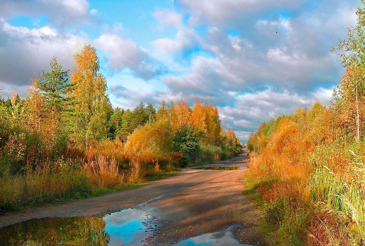Фото природа россия осень 3